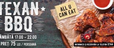 La Mesteceni Texan BBQ