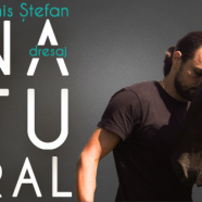 Workshop Dresaj Natural cu Denis Stefan