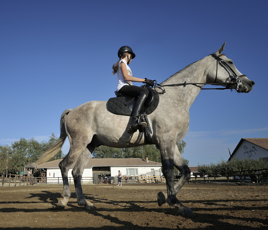 Can you learn horse riding post-20s? - Quora